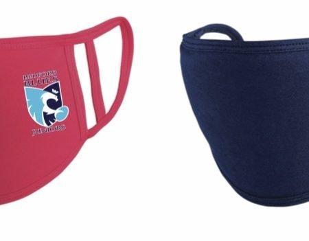 Face Masks BJB (Pink or Blue)