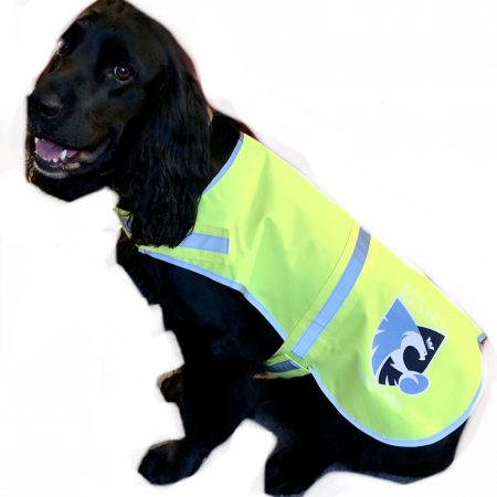 Hi-vis dog jacket BJB